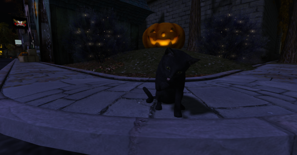 Trick or Treat event site_011
